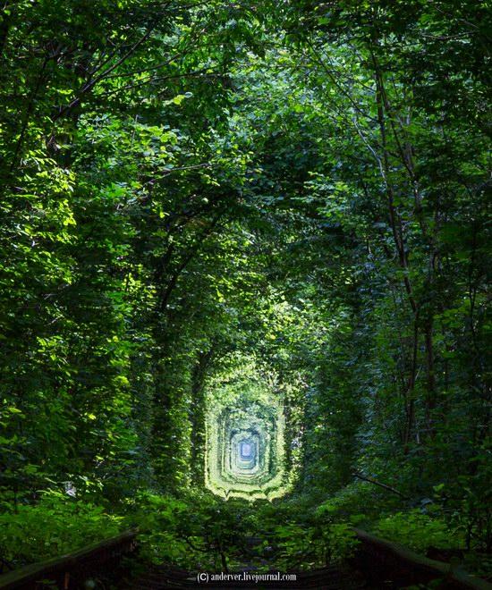 The Tunnel of Love, Rivne region, Ukraine, photo 10
