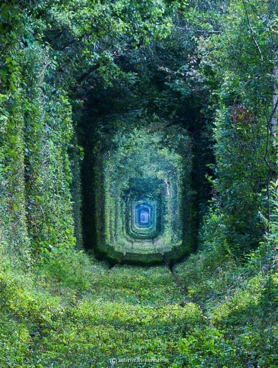 The Tunnel of Love, Rivne region, Ukraine, photo 13