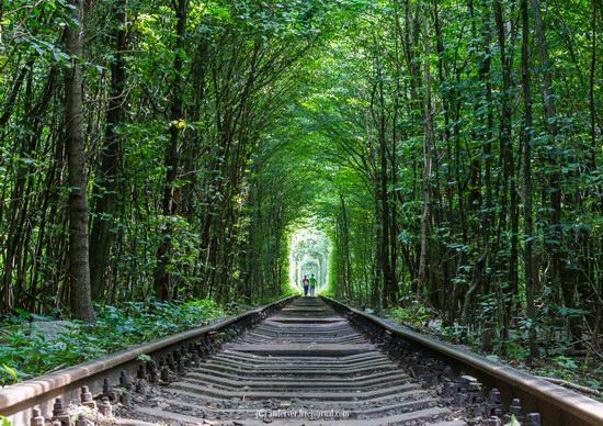 The Tunnel of Love, Rivne region, Ukraine, photo 6