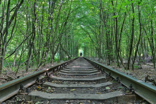 The Tunnel of Love, Rivne region, Ukraine, photo 7