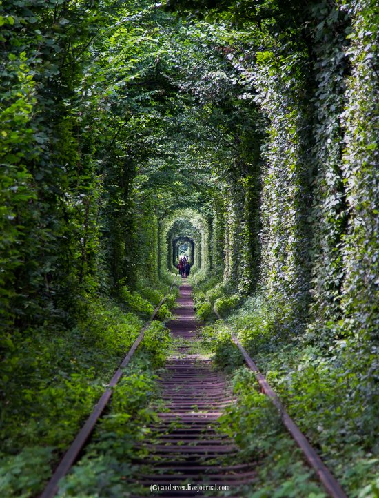 The Tunnel of Love, Rivne region, Ukraine, photo 8