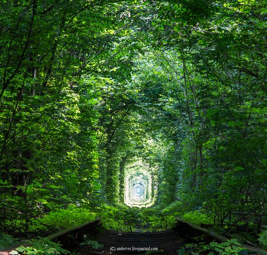 The Tunnel of Love, Rivne region, Ukraine, photo 9
