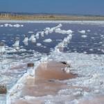 The salt desert near Odessa