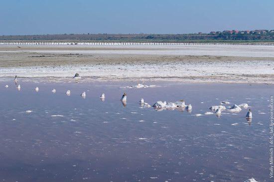 Salt desert near Odessa, Ukraine, photo 2