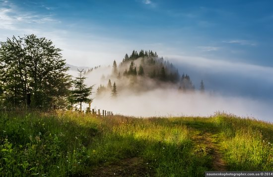 Dzembronya mystical fog, the Ukrainian Carpathians, photo 4