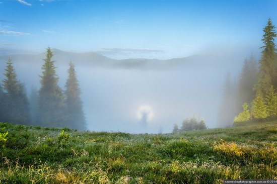 Dzembronya mystical fog, the Ukrainian Carpathians, photo 7