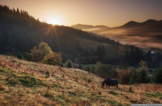 Beautiful sunrise in the Ukrainian Carpathians