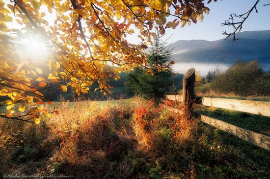 Golden autumn in the Ukrainian Carpathians, photo 2