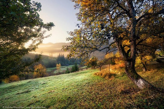 Golden autumn in the Ukrainian Carpathians, photo 3