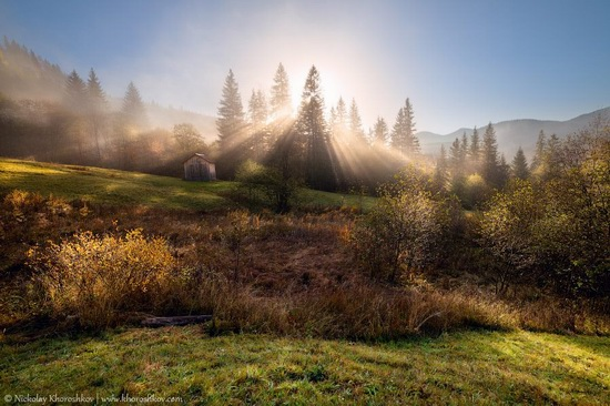 Golden autumn in the Ukrainian Carpathians, photo 5