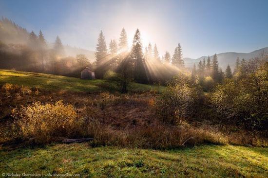 Golden autumn in the Ukrainian Carpathians, photo 5