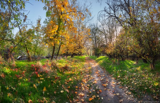 The fall on the island of Khortytsia, Zaporozhye, Ukraine, photo 6