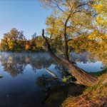 The beauty of golden autumn in Kharkov region