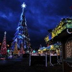 The New Year Tree on Freedom Square in Kharkov