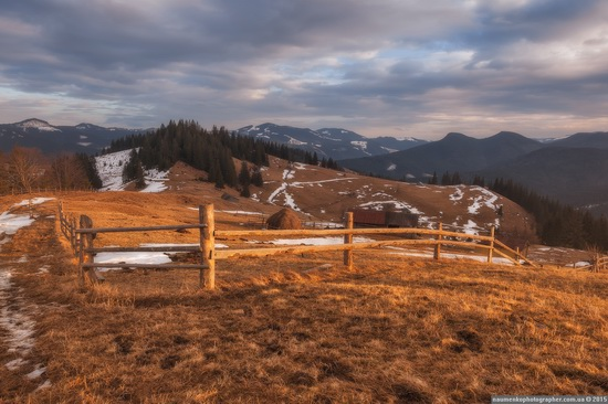 Dairy morning and caramel sunset in the Carpathians, Ukraine, photo 9