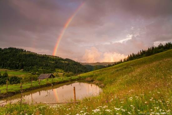 Summer evenings in the Ukrainian Carpathians, photo 1