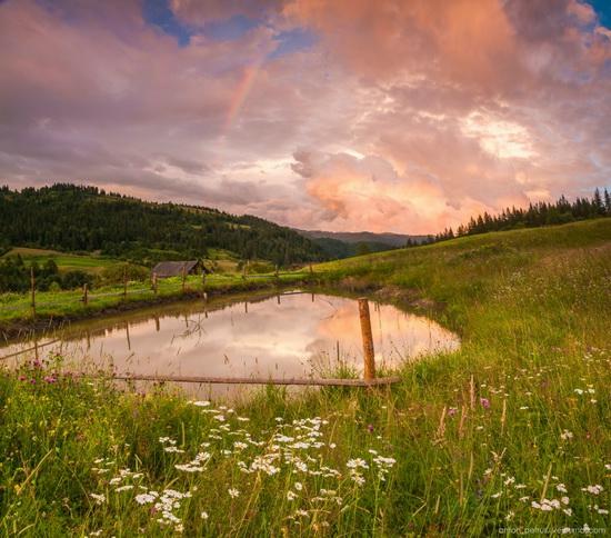 Summer evenings in the Ukrainian Carpathians, photo 3