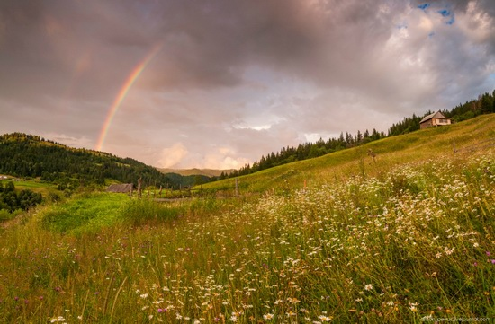Summer evenings in the Ukrainian Carpathians, photo 6