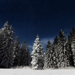 Mystical winter landscapes of the Ukrainian Carpathians