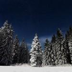 Mystical winter landscapes of the Ukrainian Carpathians
