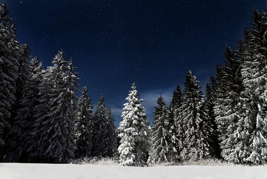 Winter in the Ukrainian Carpathians, photo 1