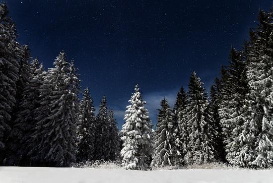 Winter in the Ukrainian Carpathians, photo 1