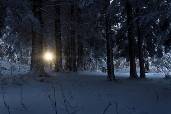 Winter in the Ukrainian Carpathians, photo 4
