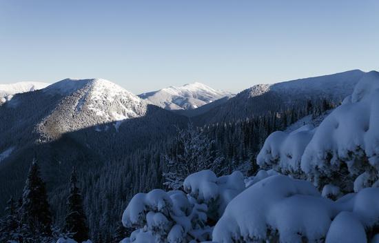 Winter in the Ukrainian Carpathians, photo 7