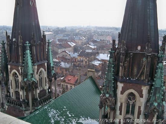 The Church of Sts. Olha and Elizabeth, Lviv, Ukraine, photo 15