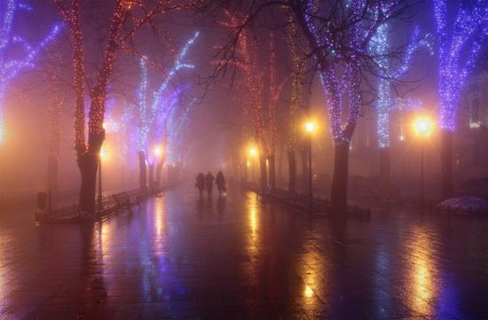 Winter in Odessa, Ukraine, photo 2