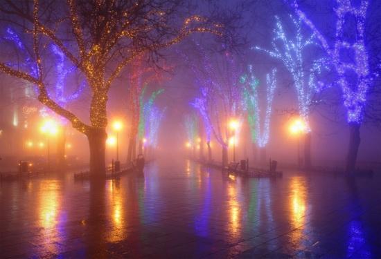 Winter in Odessa, Ukraine, photo 6