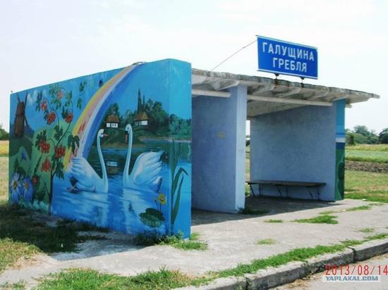 Painted bus stops in Poltava region, Ukraine, photo 3
