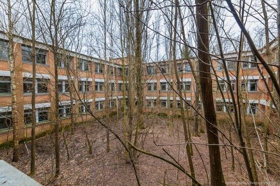 Chernobyl zone 29 years later, Ukraine, photo 10