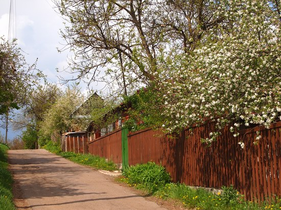Poltava streets in spring, Ukraine, photo 18