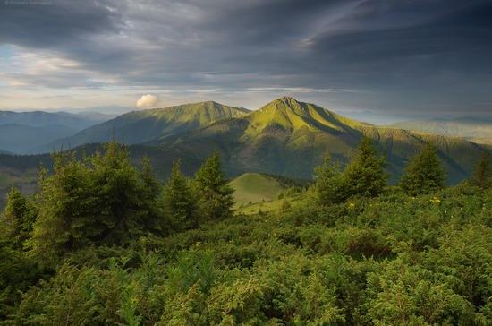 The Hutsul Alps, Zakarpattia region, Ukraine, photo 20