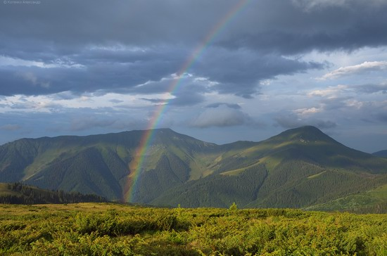 The Hutsul Alps, Zakarpattia region, Ukraine, photo 21