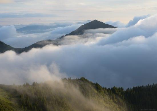 The Hutsul Alps, Zakarpattia region, Ukraine, photo 4