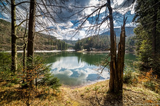 Lake Synevyr, the Carpathians, Ukraine, photo 1