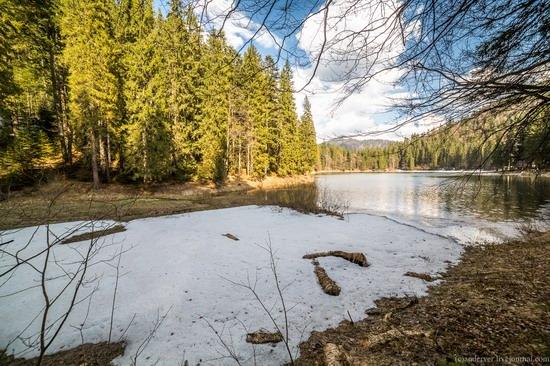 Lake Synevyr, the Carpathians, Ukraine, photo 10