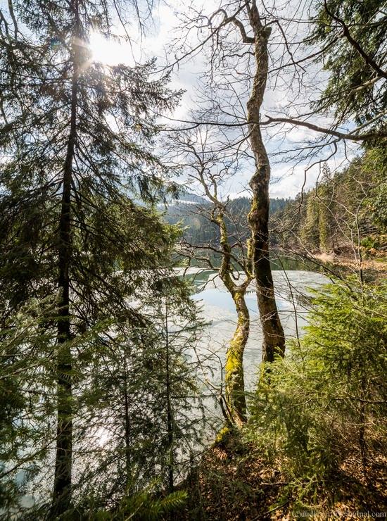 Lake Synevyr, the Carpathians, Ukraine, photo 4