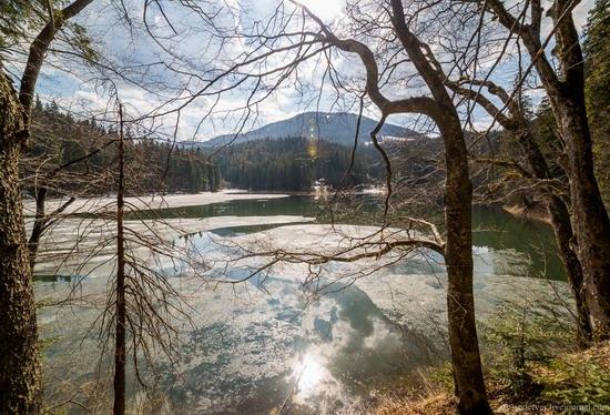 Lake Synevyr, the Carpathians, Ukraine, photo 5
