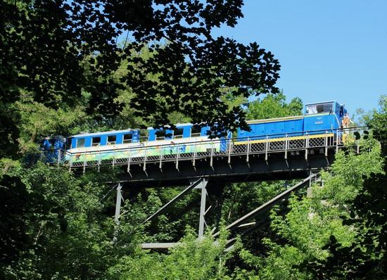 Children's Railway in Kyiv, Ukraine, photo 8