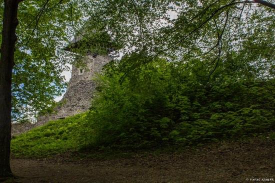 The ruins of Nevytsky Castle, Zakarpattia region, Ukraine, photo 14