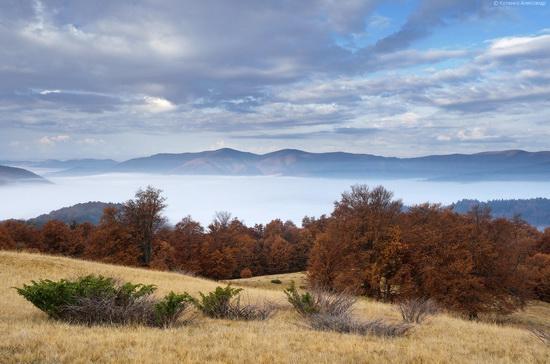 All colors of autumn in the Ukrainian Carpathians, photo 13