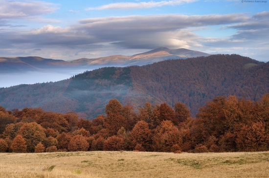 All colors of autumn in the Ukrainian Carpathians, photo 14