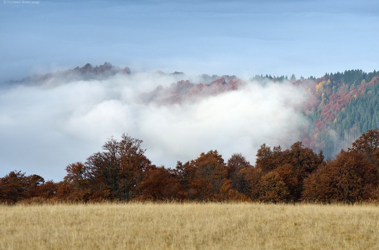 All colors of autumn in the Ukrainian Carpathians, photo 15