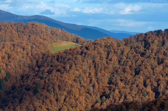 All colors of autumn in the Ukrainian Carpathians, photo 17