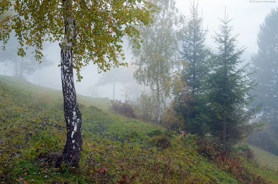All colors of autumn in the Ukrainian Carpathians, photo 2