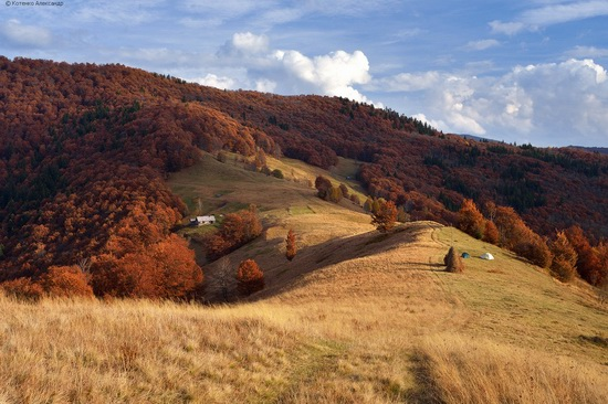 All colors of autumn in the Ukrainian Carpathians, photo 22