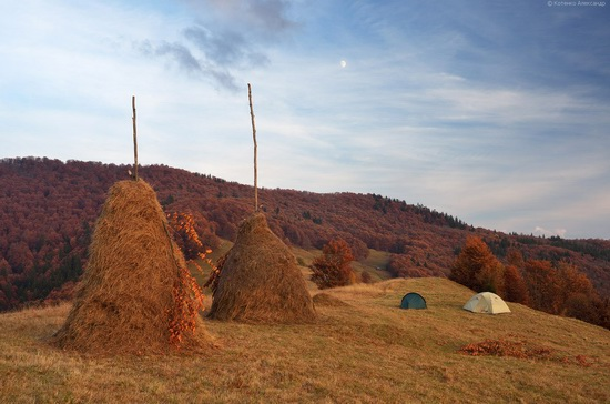 All colors of autumn in the Ukrainian Carpathians, photo 23